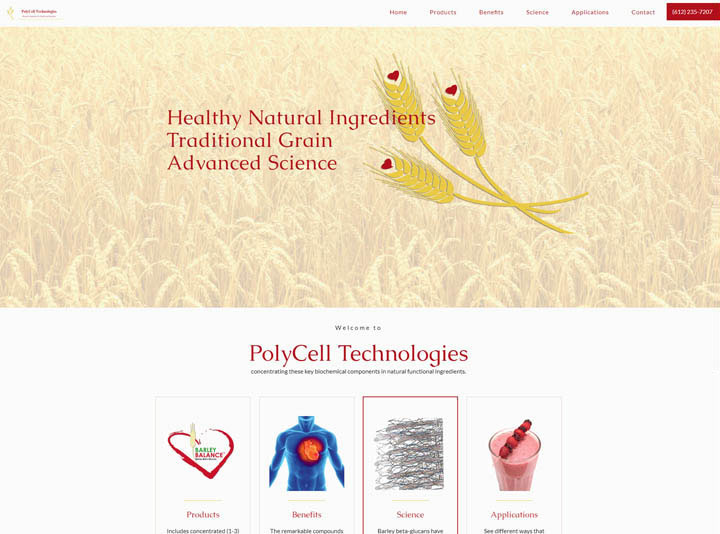PolyCell Technologies Website